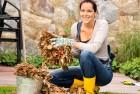 Gardener Jobs